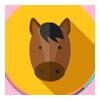Auf dem Rücken der Pferde liegt das Glück der Erde - du reitest!